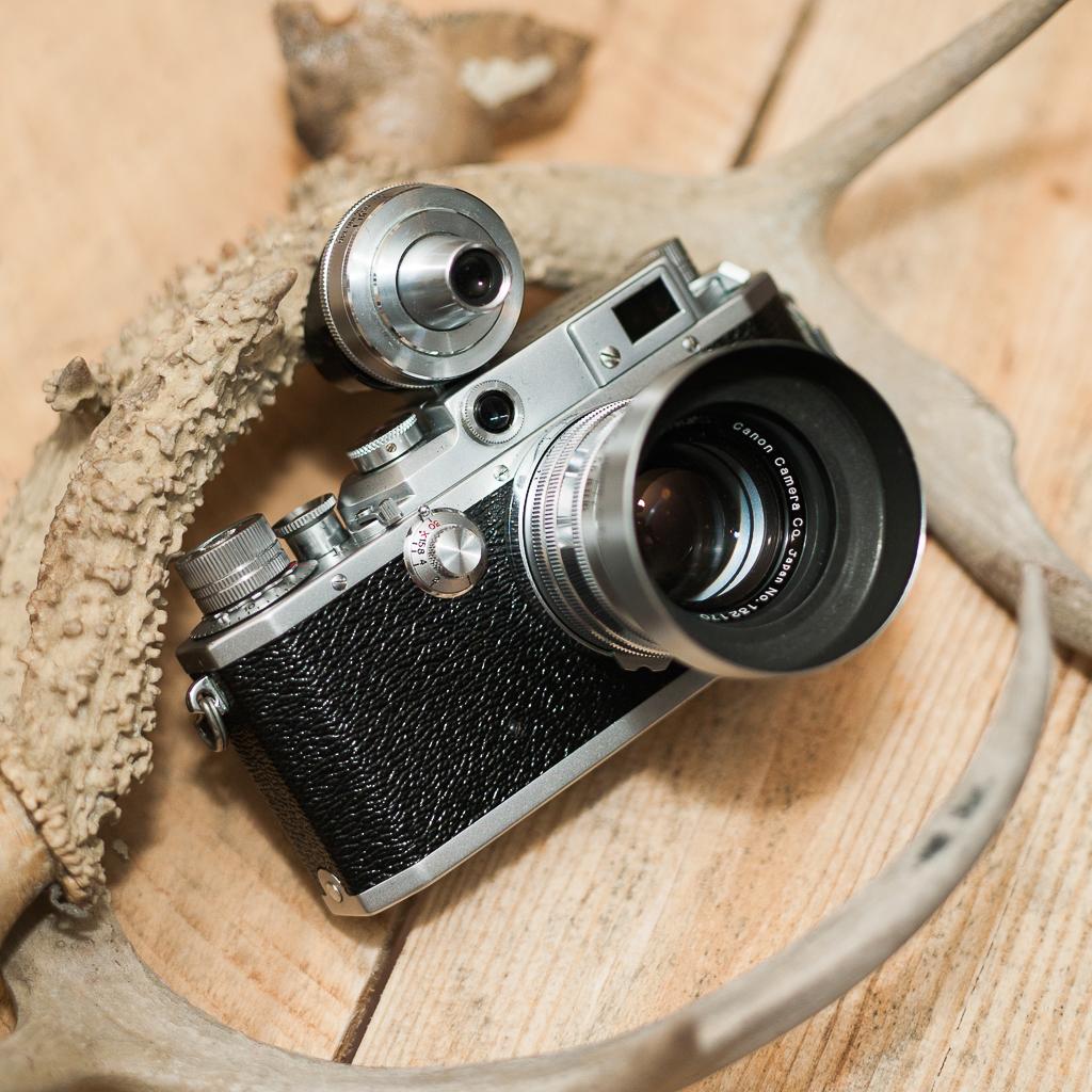 Camera: Mamiya 645 AFD / Mamiya ZD  Lens: Mamiya 80mm 2.8