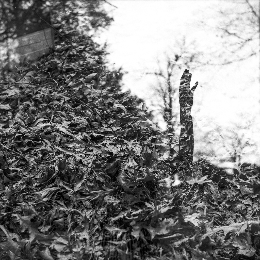 Camera: Yashica D  Film: HP5+