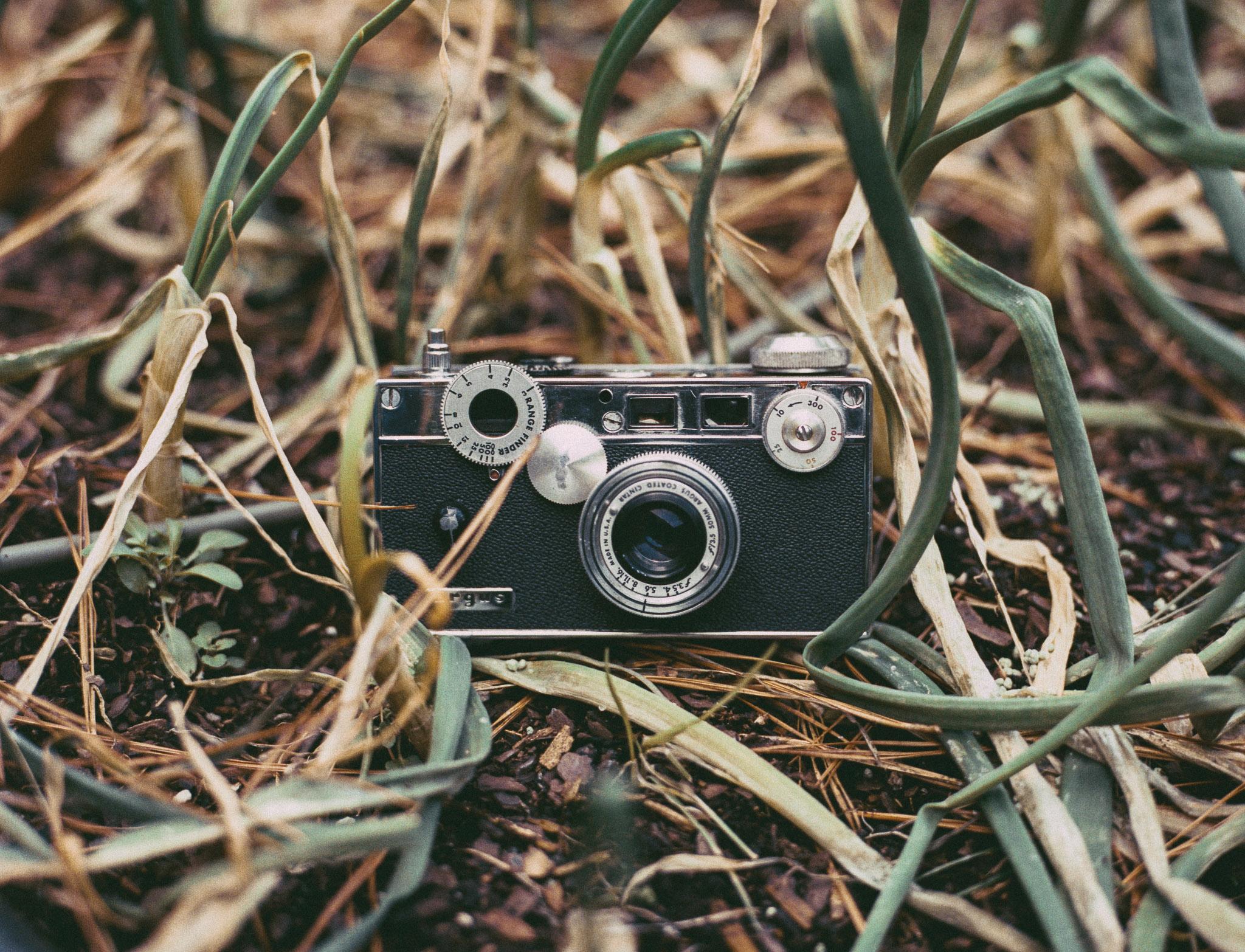 Camera: Mamiya 645 Af  Film: Portra 400  Scanned on Epson V700