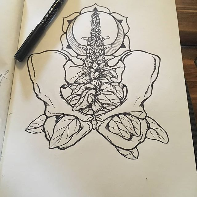 I am thrilled with Jasmine's (@heartwrenchstudio) gorgeous drawing for my upcoming Pelvis Alive! class happening at The Hive (@thehivebendor) Sunday, July 14th 4-6:30 pm. We will be mapping and embodying our pelvises through touch, breath and sound. In meditation we will discover the wisdom our pelvic centers have to share with us.  Come join us! Open to women, transgender women and non-binary people. $15-30 sliding scale. #pelvisalive #pelvichealth #embodiedpelvis #somaticbody #womenshealth #rootchakra #arvigotherapy #mayanabdominalmassage