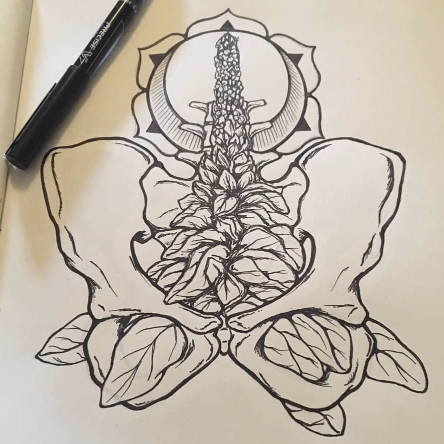 Mullein, a plant of spiritual and physical alignment, growing in the pelvis. Illustration by Jasmine at  heartwrenchstudio.com .