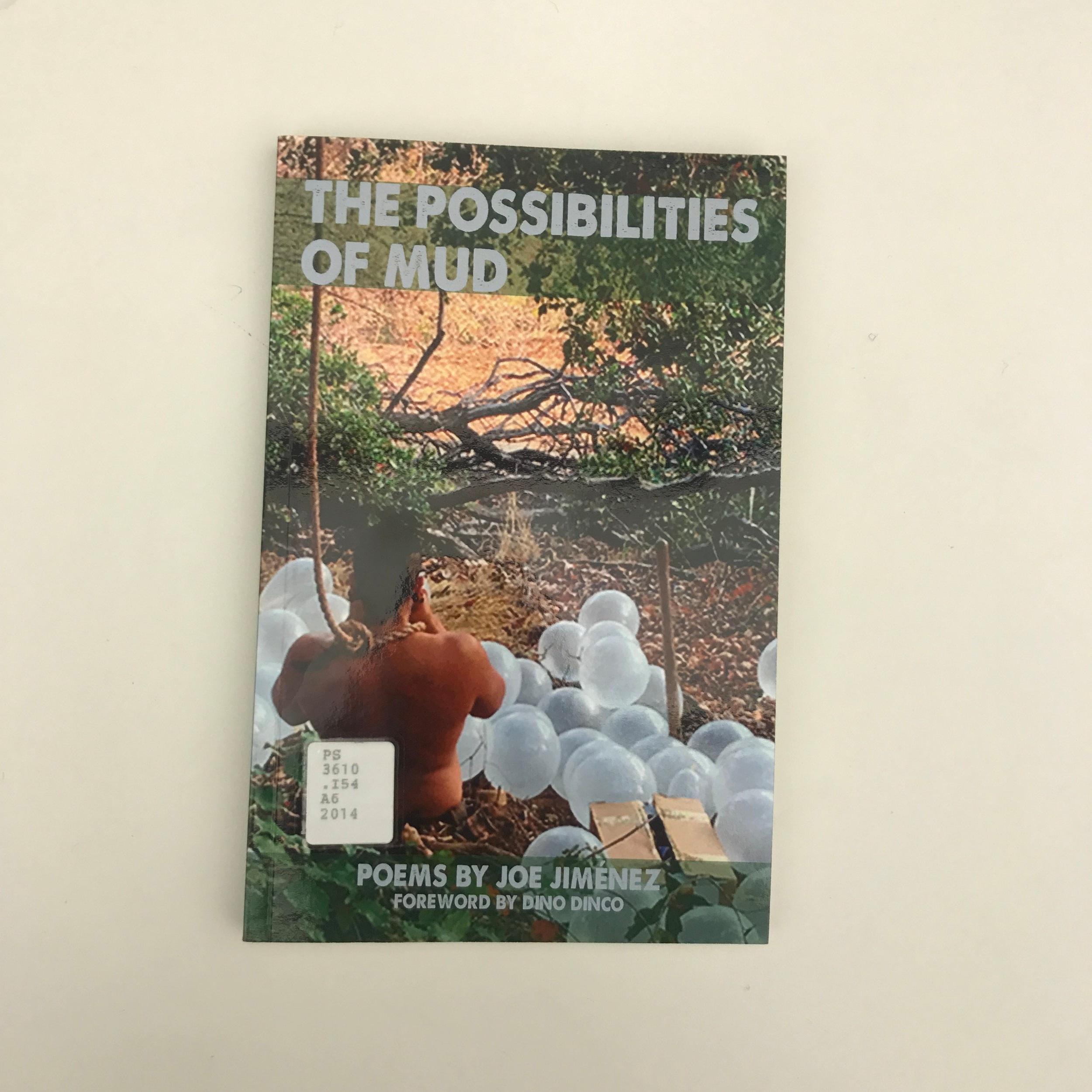 The Possibilities of Mud by Joe Jimenez