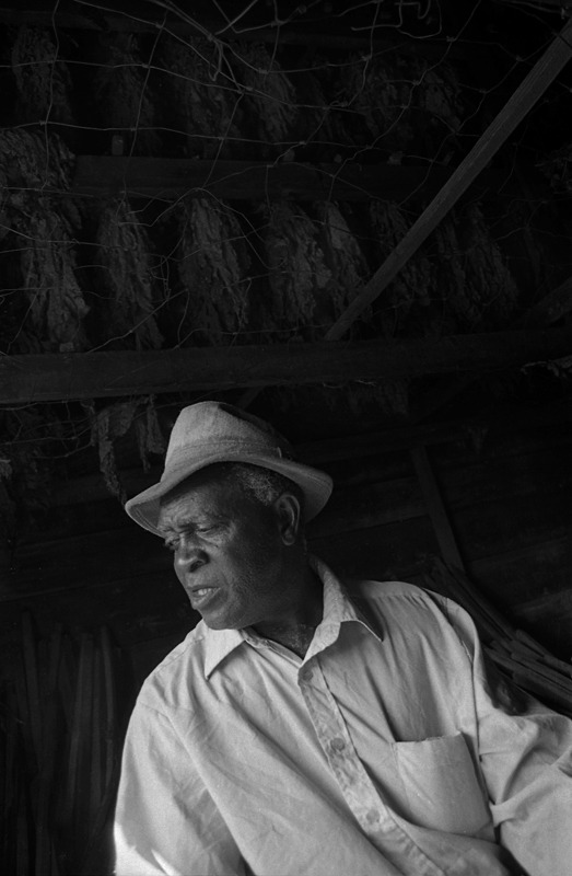 Tobacco Farmer, Eastern North Carolina