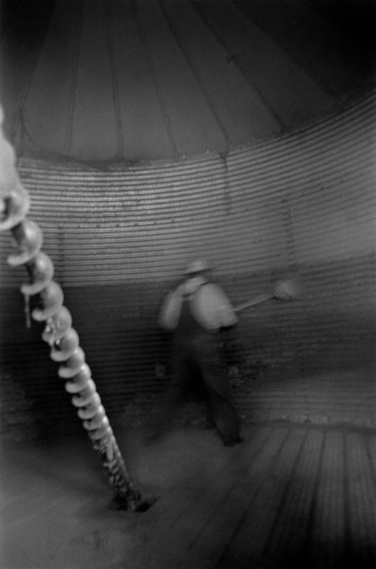 Farmer Cleaning Silo, Chatham County, NC