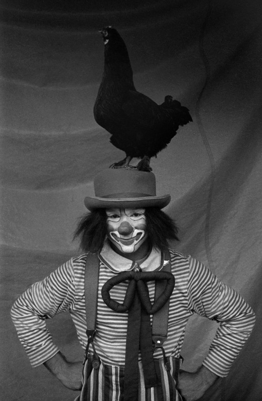 Circus Clown, Oxford, North Carolina  - for the North Carolina Independent