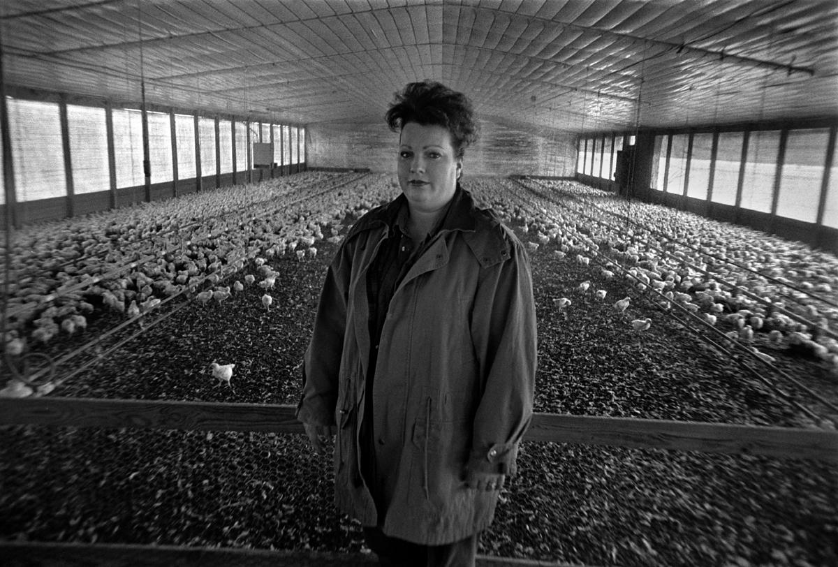 Poultry Farmer Diane Tinsley, Samson, Alabama 1994