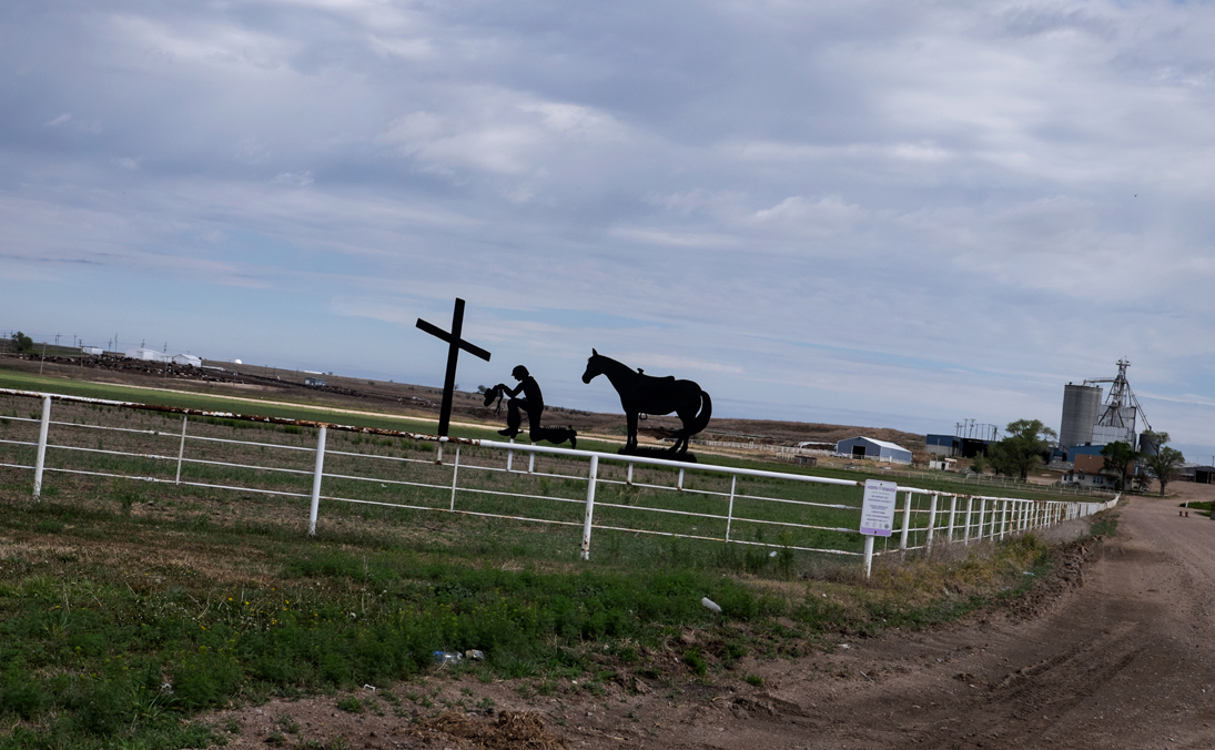 Cattle Feedlot, Dodge City, Kansas 2015 - for  Farm Aid