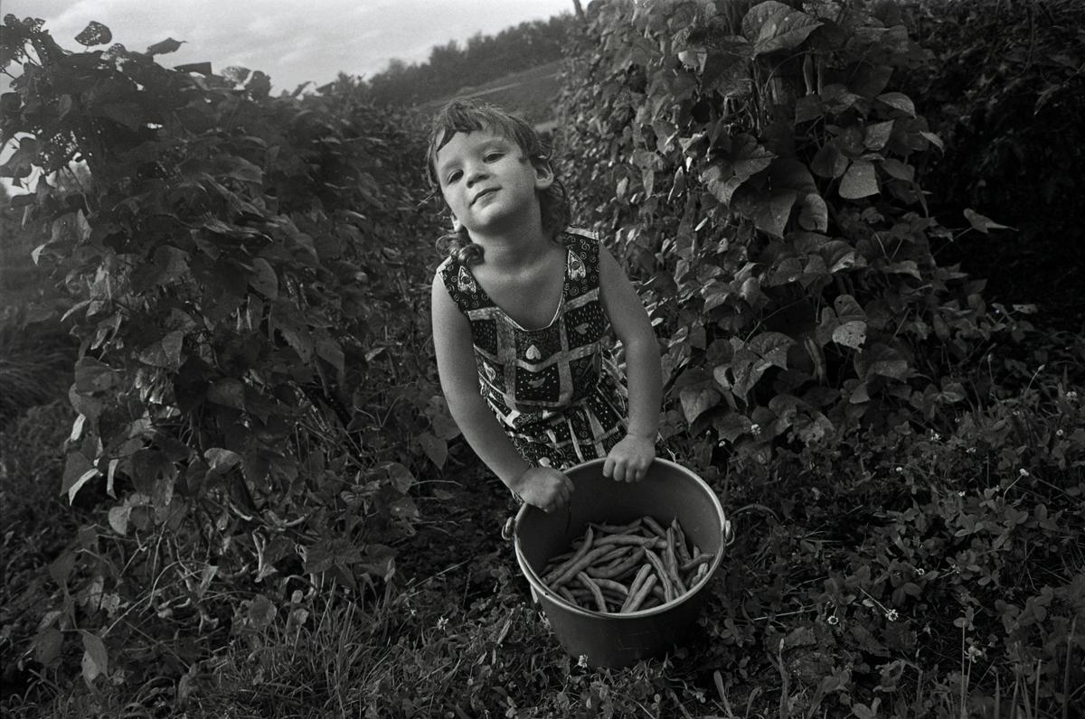 Kate Picking Beans in Granny Faye's Garden, Valdese, NC 1994