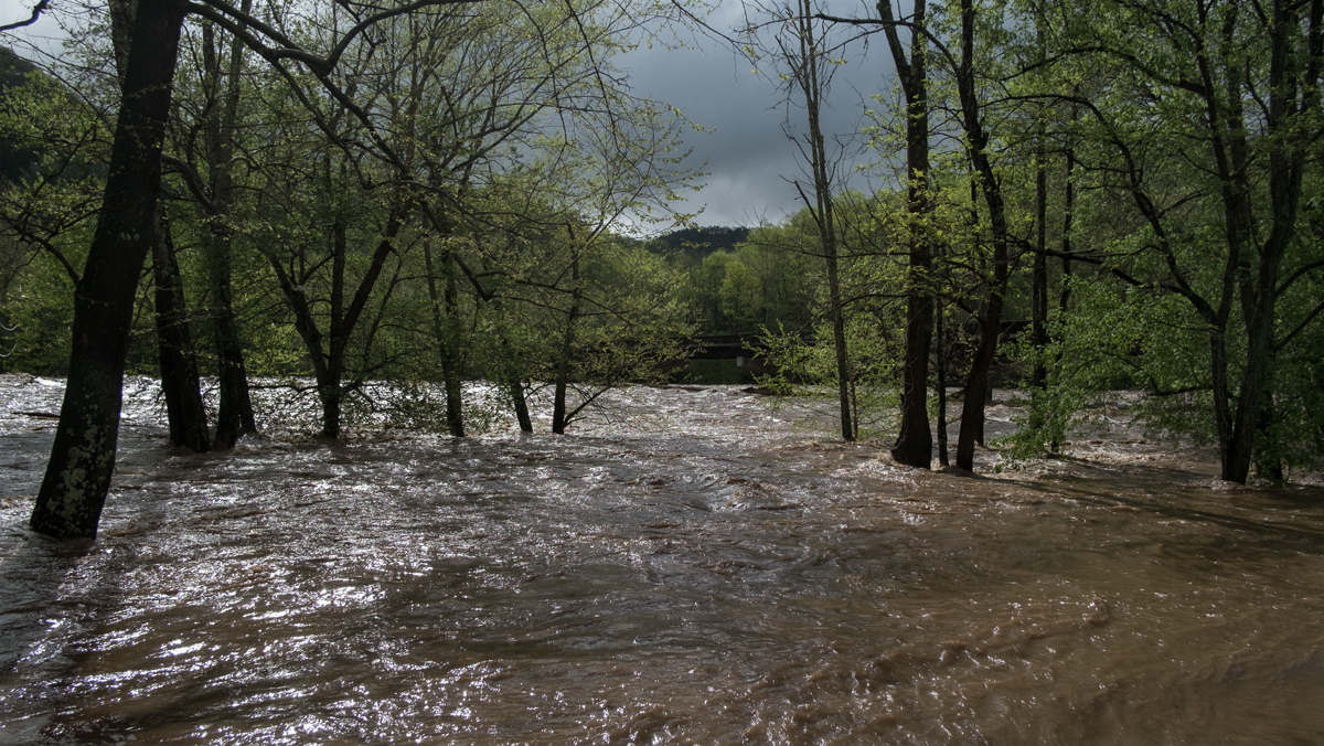 The flooded French Broad River at Barnard, 2019/04/19.