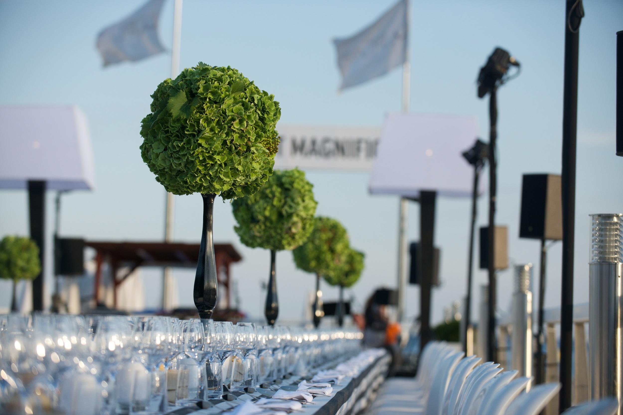 2014_06_Cannes_Majestic_Dinner_59.jpg