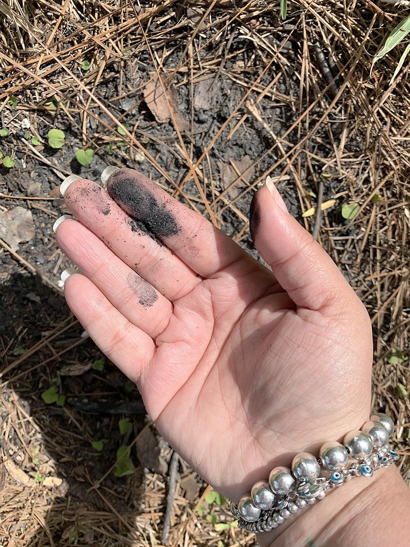 sheila-burgos-earthpigments-charcoal.jpg