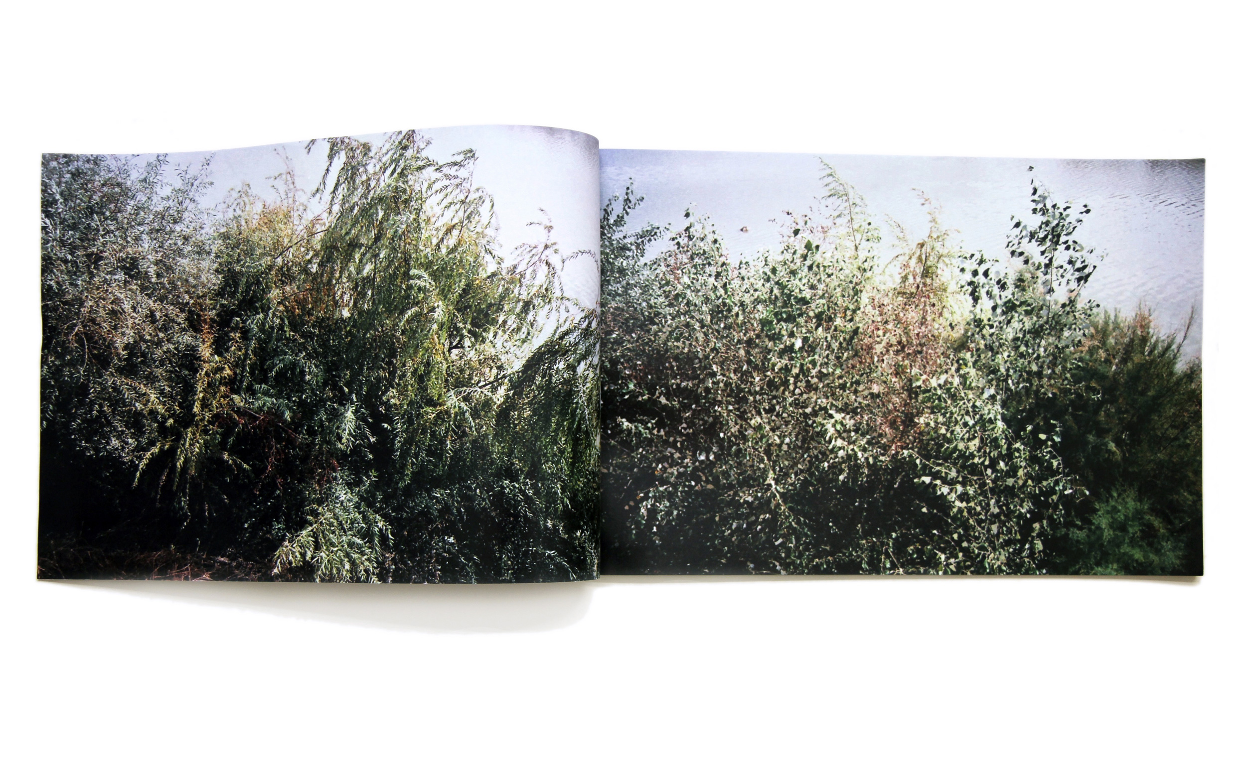 """River Trees  2016 colour laser print artist book 10"""" x 15"""" 10 pages edition of 40"""