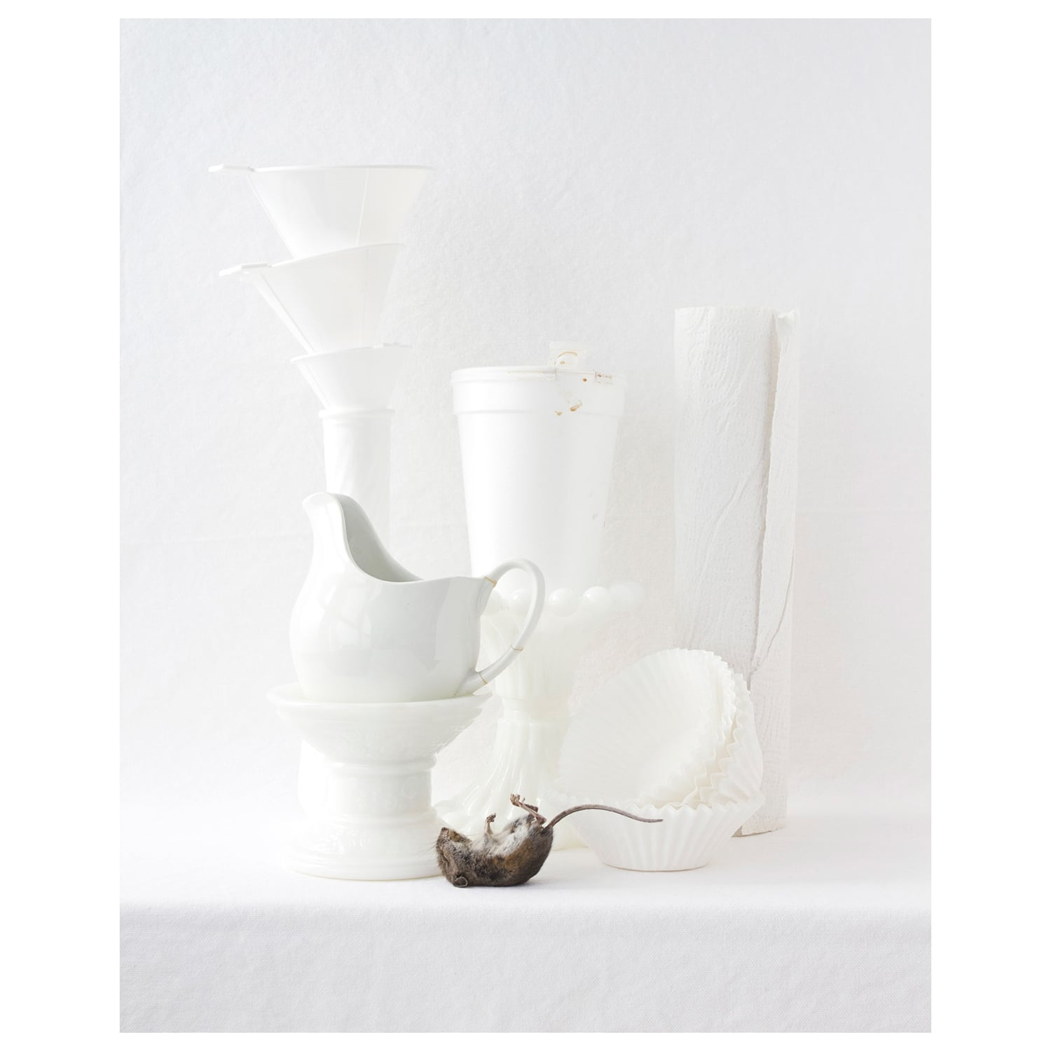 Still Life with Mouse  2011 Archival Pigment Print on rag paper 10 x 8 inch image on 11 x 8.5 inch paper edition of 10