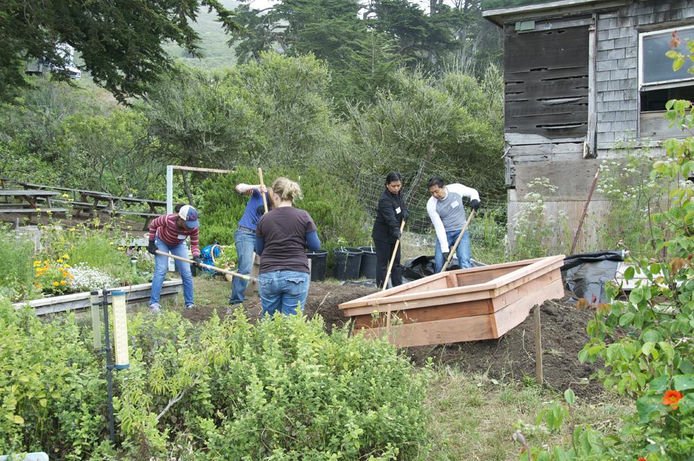 Clif Bar Volunteer Day At Slide Ranch - garden bed making(1000px).jpg