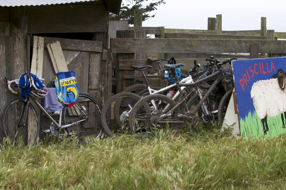 Clif Bar Volunteer Day At Slide Ranch - bikes.jpg