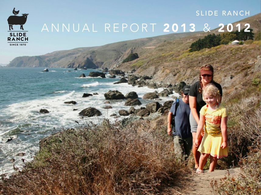 Annual Report 2013 and 2012