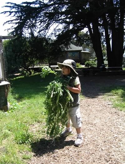Slide Ranch May 2005 5.jpeg