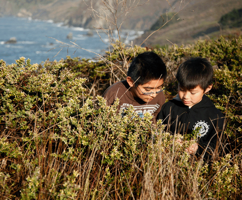 Boys_Nature_Coast.png