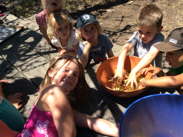 Summer Camp July 27, 2015 - 11 of 36.jpg