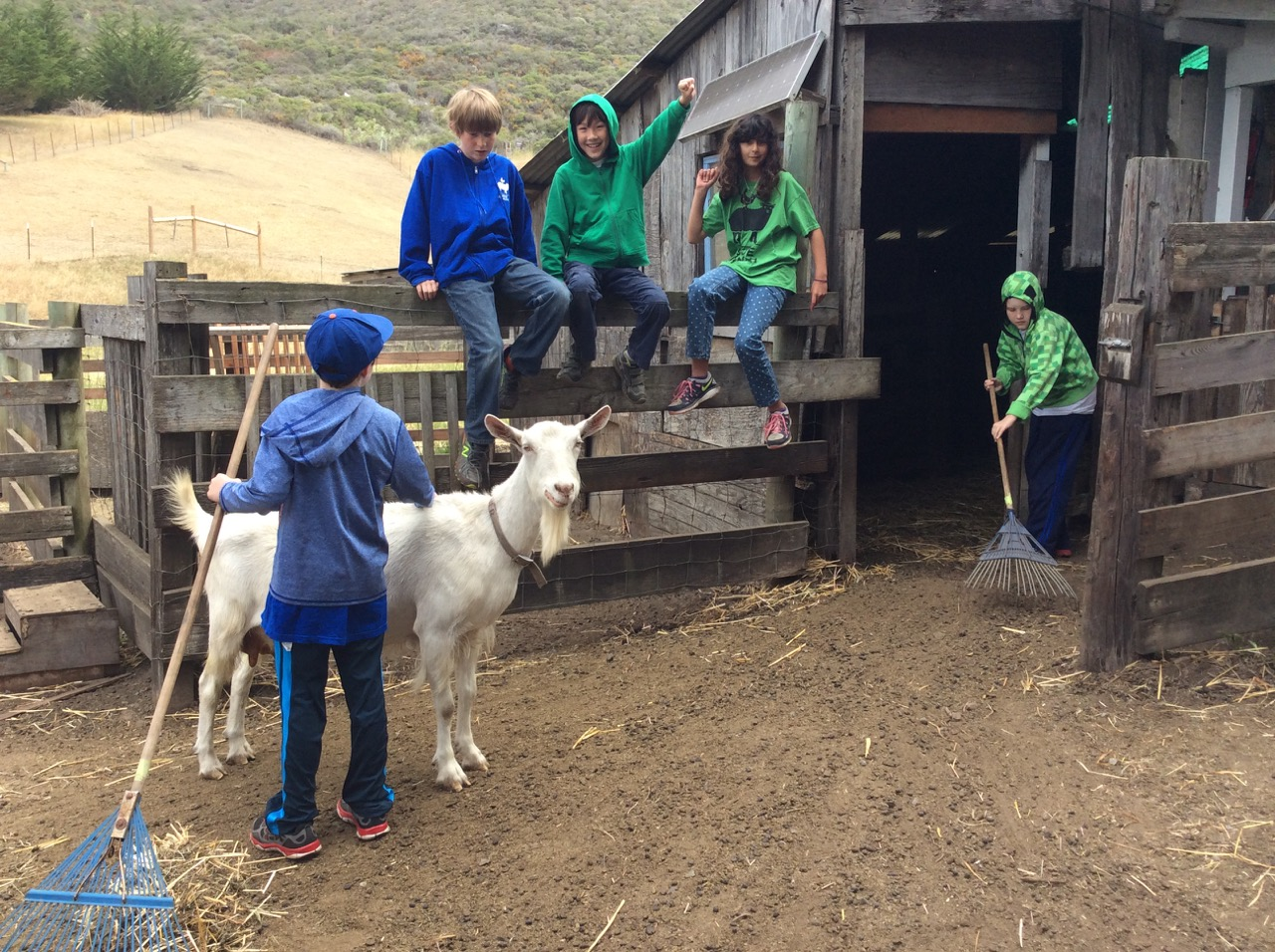 Slide Ranch Summer Camp Highlights 2015 - 4 of 71.jpg