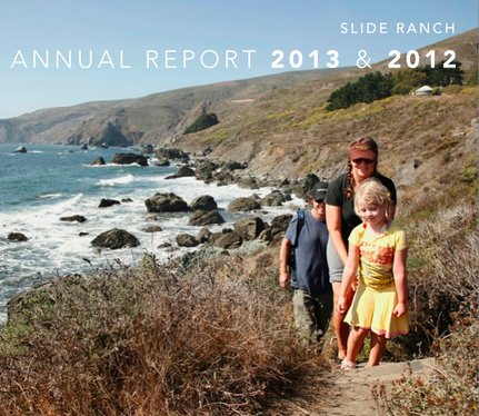 Annual+Report+2013+and+2012.png