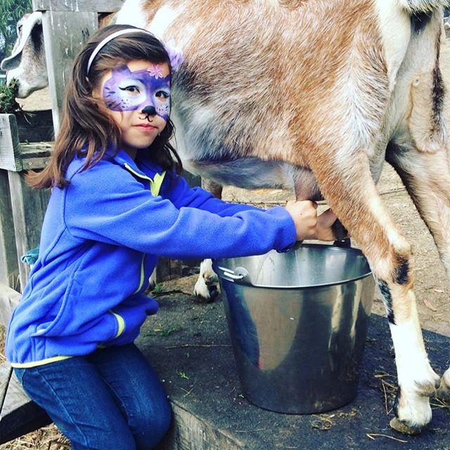Halloween Family Farm Day fun!