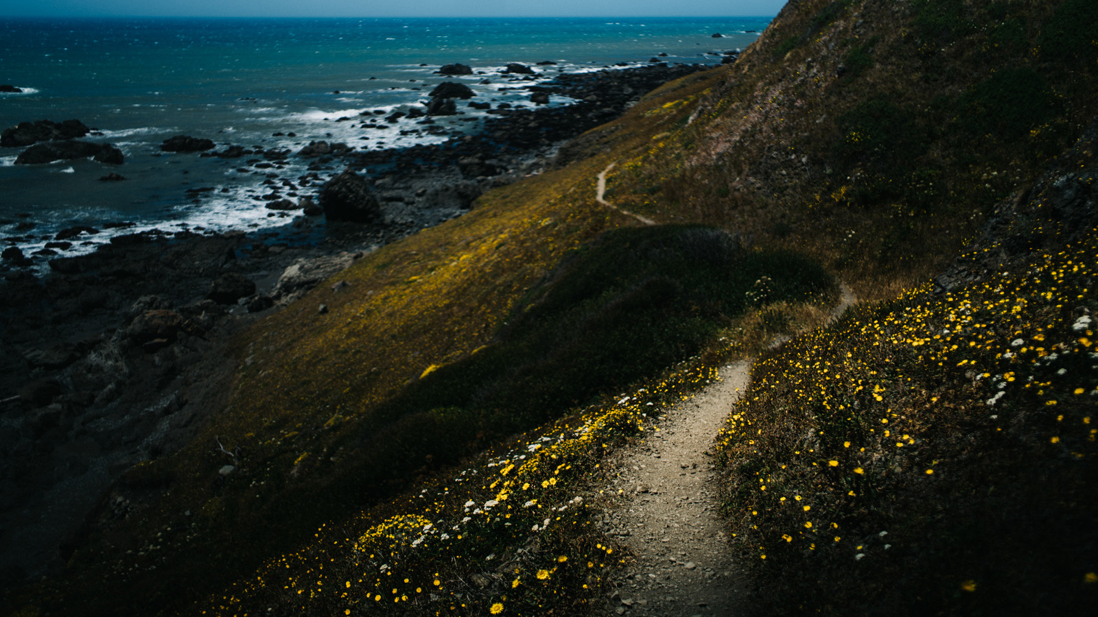 The Lost Coast Trail saw us through just under thirty miles of the longest stretch of totally undeveloped U.S. Pacific coastline outside of Alaska.