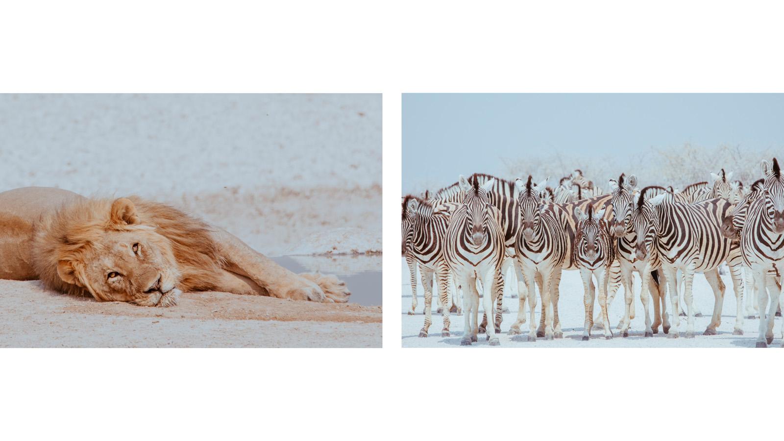 Namibia_p13_14.jpg