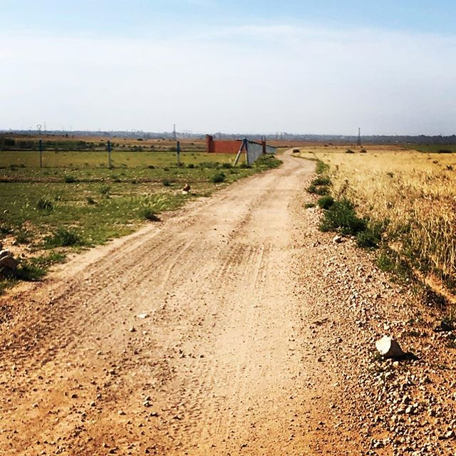 The road less traveled... #runninginmorocco #runmorocco #sightrunning #goforarun #training #igersmorocco #igrunning #health #run #runners #running #morocco #travel #runnerslife
