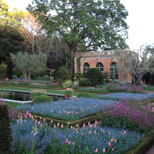 Filoli gardens sml.JPG