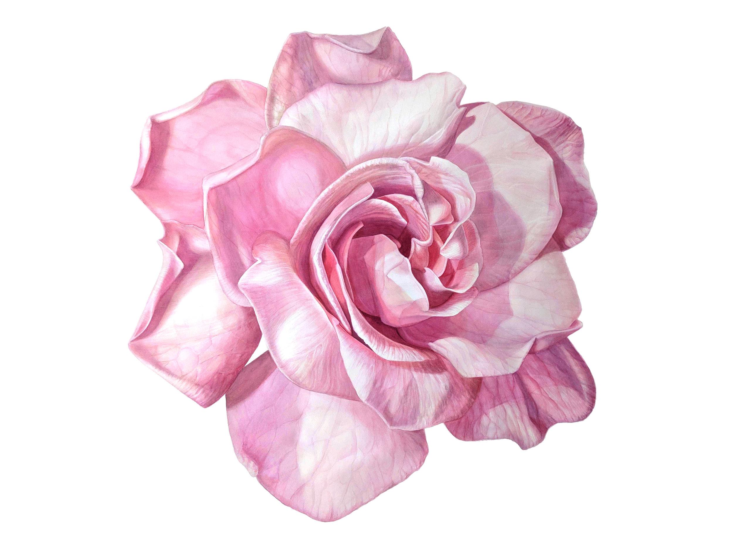 Lauren's Gardenia -SOLD