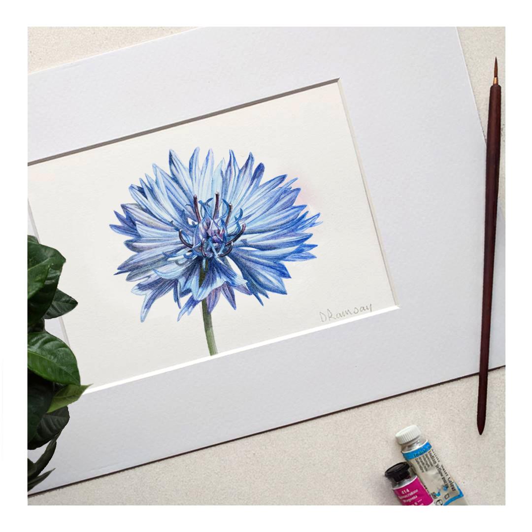 small-blue.jpg