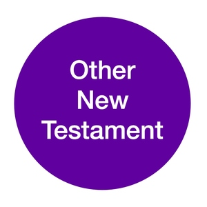 Other+New+Testament+-+Nigel+Lee+(2).jpg