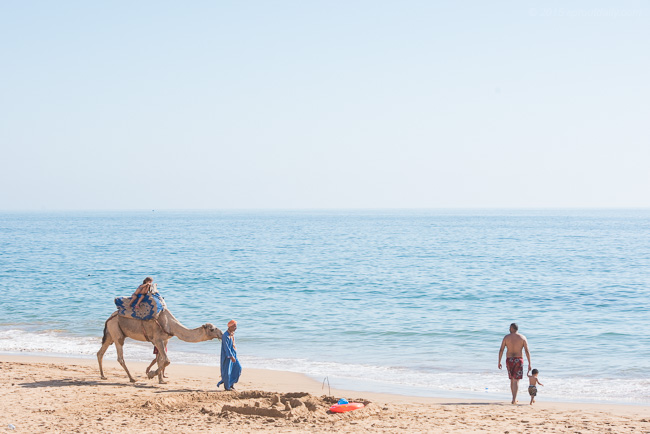 @SproutDaily can certainly take a good shot. One of his frames from his recent Moroccon endeavour.