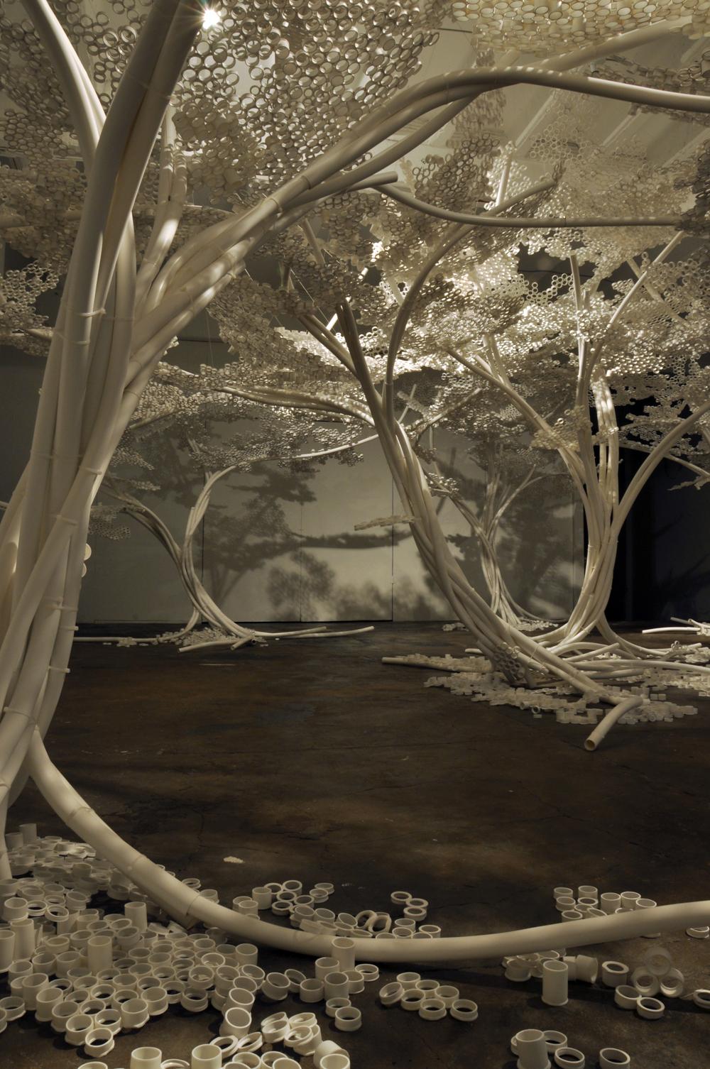 Tom Price PP Trees_Industry 0202.jpg