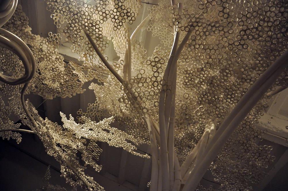 Tom Price PP Trees_Industry 0707.jpg