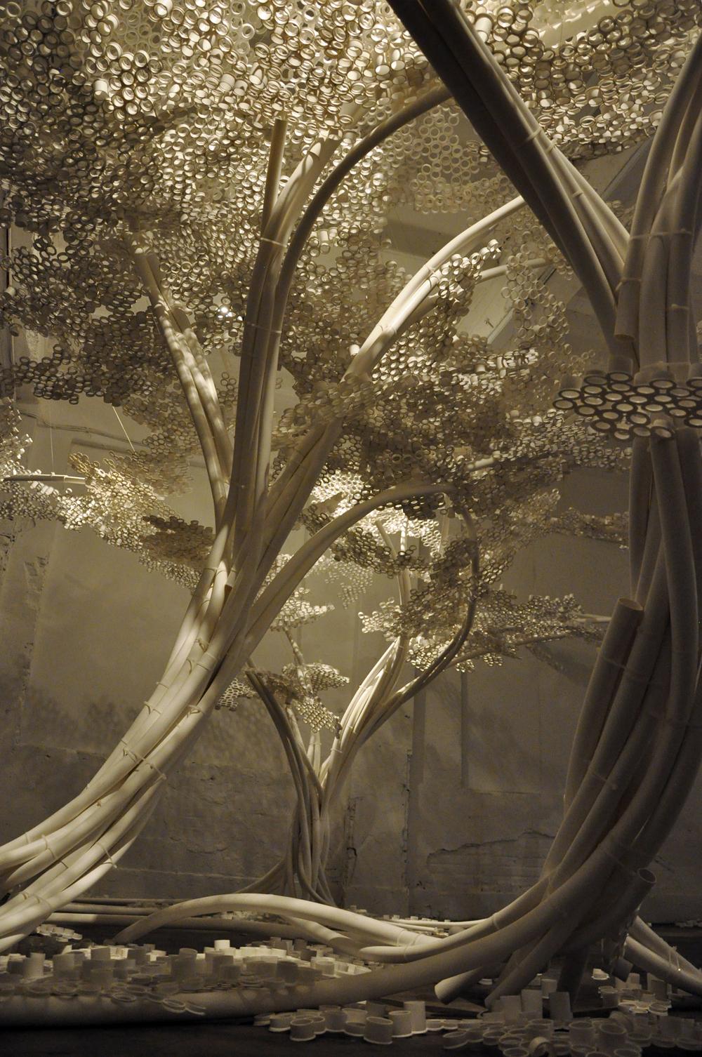 Tom Price PP Trees_Industry 1111.jpg