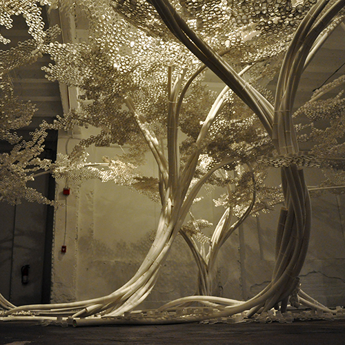 VIDEO / PP Trees, Industry Gallery