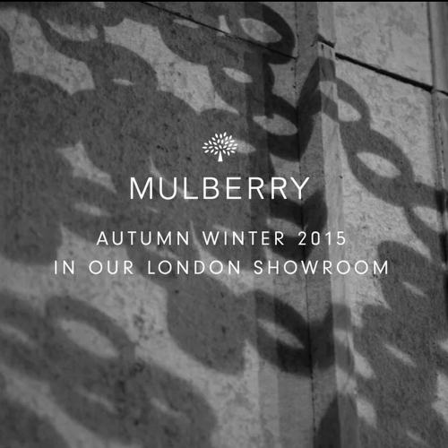 VIDEO / Installation for Mulberry