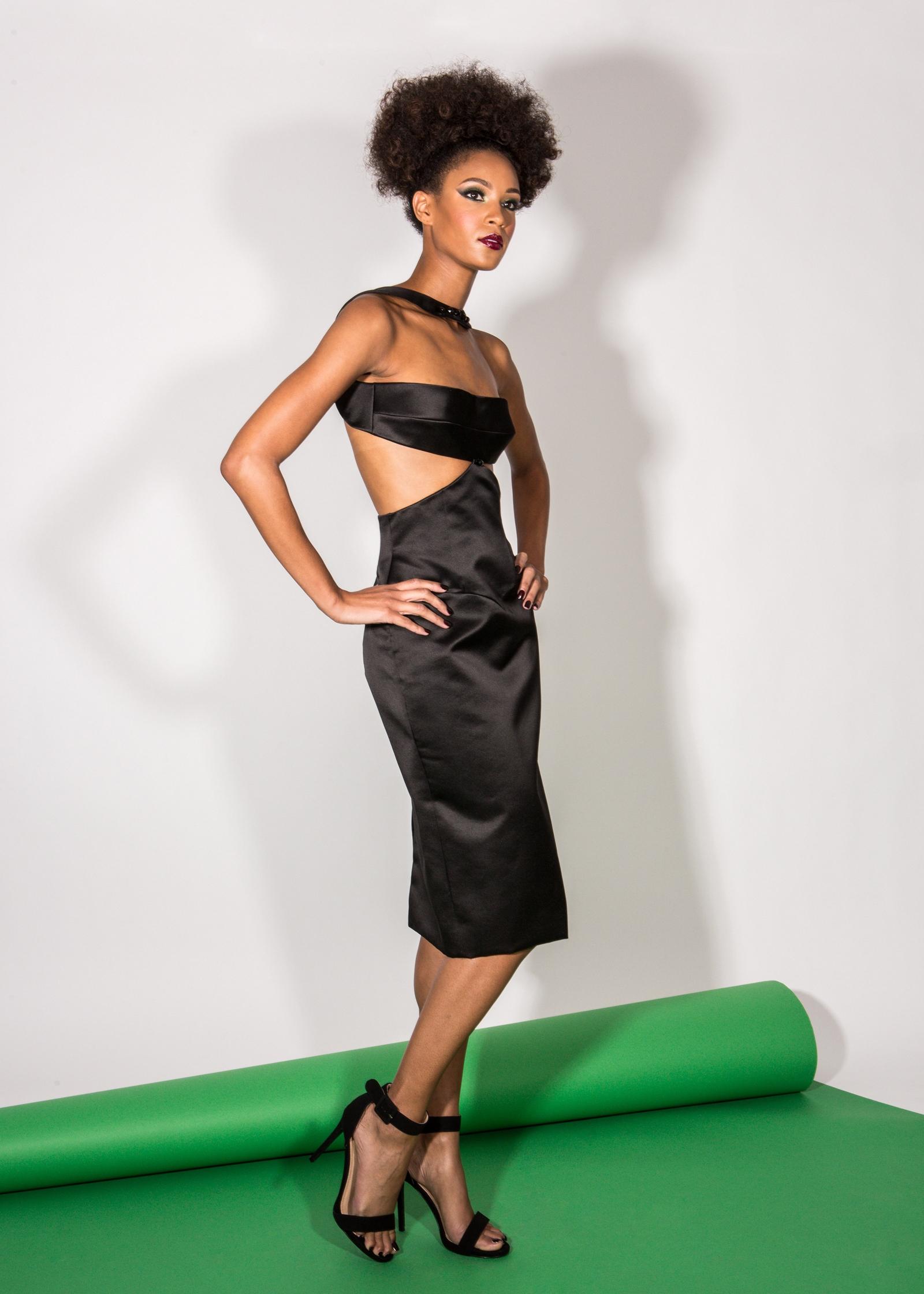 FW17 Paul Carroll Collection Beverly Dress Web.jpg
