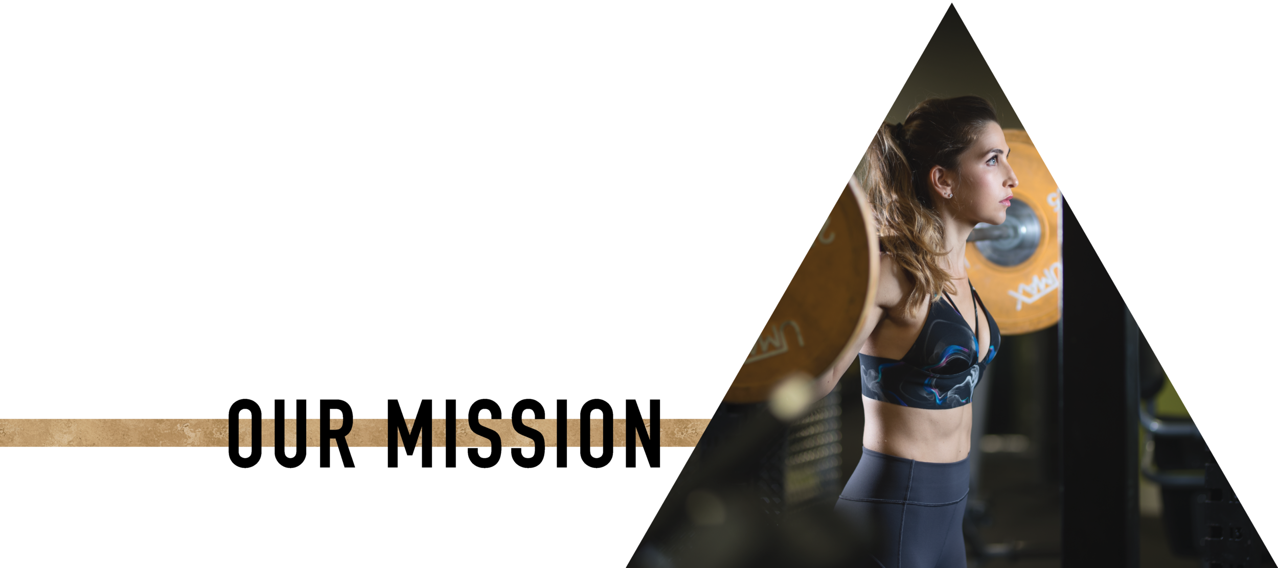 ABOUT_mission_header-14.png