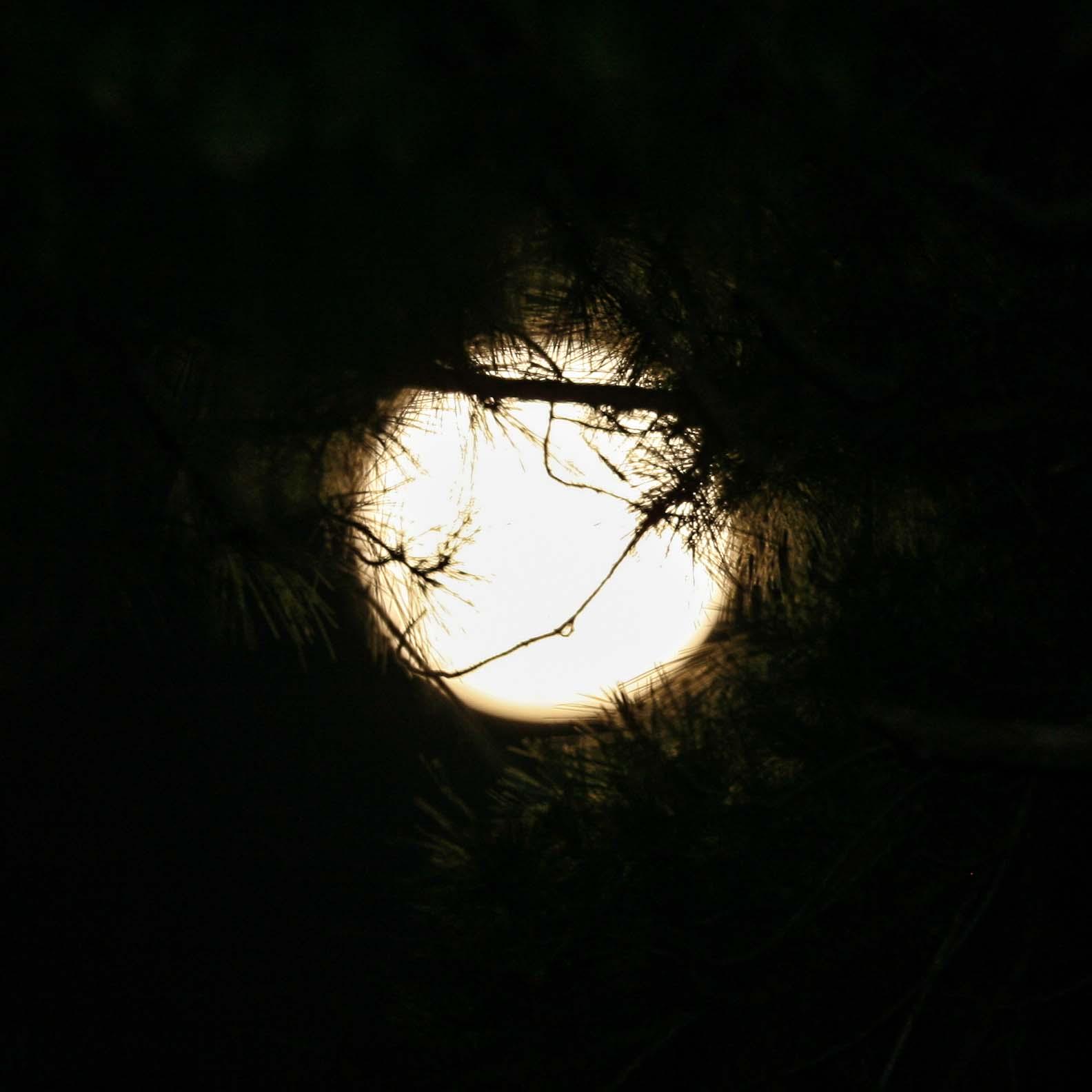 blog_moon_shadow.jpg