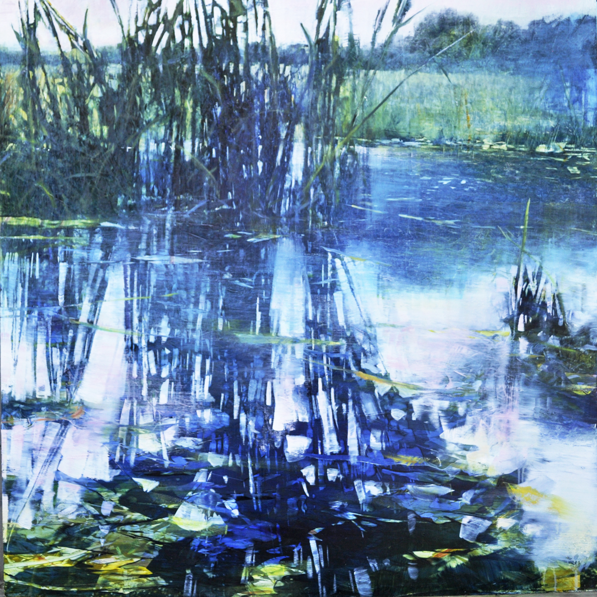 """Blue Reeds, Grasses"", oil on anodized aluminum, 48x48"