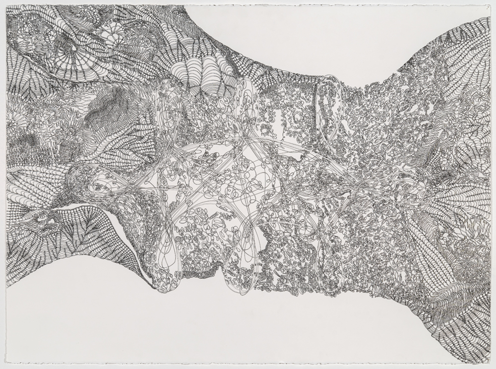 Stamps_Knot Within Bounds_ink on paper_22x30_1750.jpg