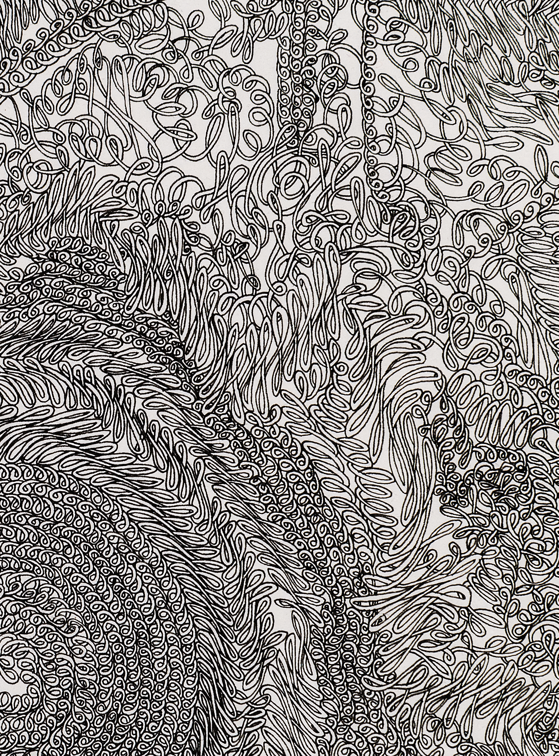 """Waste Not, Want Knot (DETAIL)"", ink on paper, 22x30"