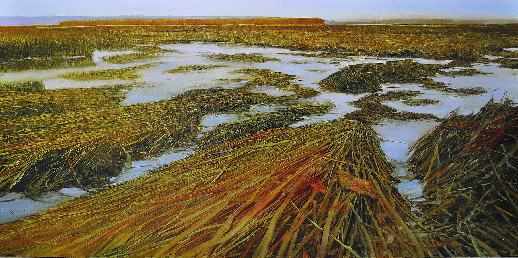 Dunlop_Shoreline Marsh Dunlop_Labyrinth_ oil on brushed silver anodized aluminum_24x48.jpg