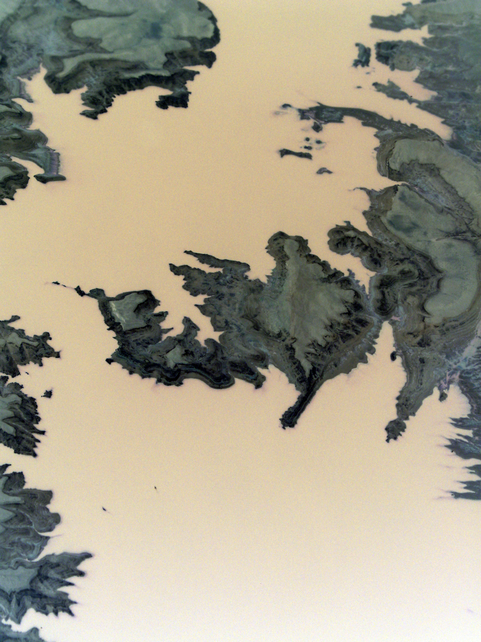 McClanahan_Branching-Rivers28_resin over photo on panel_24x30_1600.jpg
