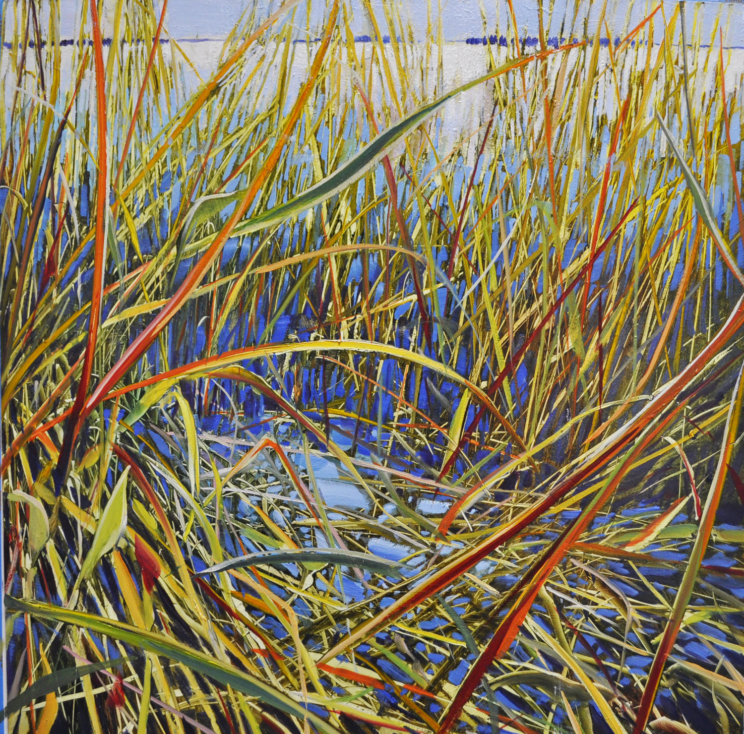 """Intimate Sea Grass"", oil aluminum, 18x18, $2,200"