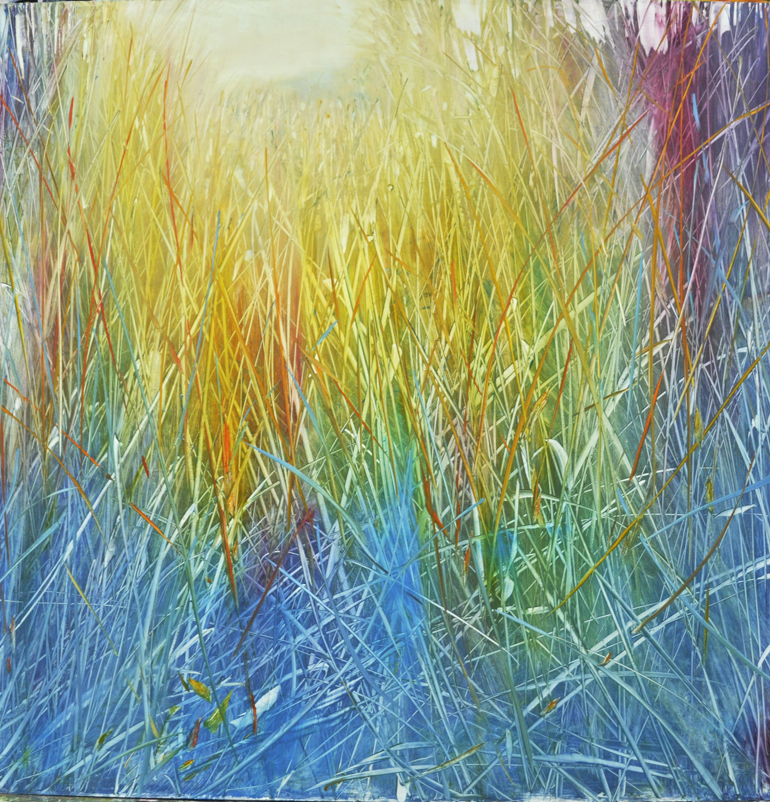 """Meadow Spectrum"", oil on enameled aluminum, 36x36, $6,500"