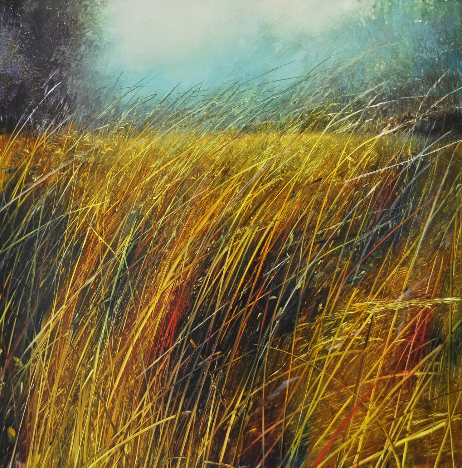 """Morning Meadow"", oil on enameled laminated aluminum, 24x24, $3,500"